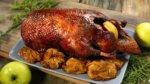 Дикая утка: рецепты приготовления в домашних условиях вкусно и просто
